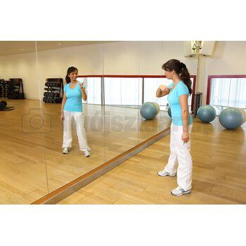 ściany lustrzane do sal fitness